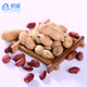 Chinese new crop red skin peanuts kernel