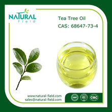 100% Pure Natural Chinese Fresh Tea Tree Oil Uses, Used for Shampoo Tea Tree Oil