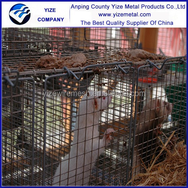 Galvanized wire netting mink cage for mink farming