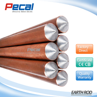 High quality copper coated stainless steel 4ft length wire earth rod