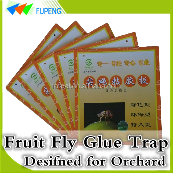 FUPENG Low Cost Reduce Pollution Insect Sticky Traps Fruit Fly Glue Board