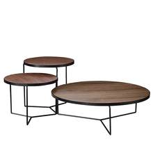 Plywood Top Stainless Steel Black Bolor coffee Side Table <strong>Furniture</strong>