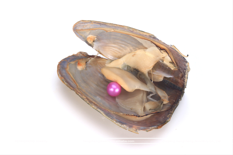 Hengsheng Amazing Gift Beautiful Rose Red 6-8mm Pearl Oyster Akoya with Nearl Round Pearl for Friends