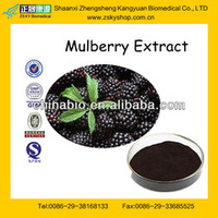 Factory Supply Hot Sale Mulberry Fruit Extract Anthocyanin 5%-25%