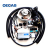 /product-detail/lpg-conversion-kits-lpg-sequential-injection-system-ac300-system-for-lpg-60231484986.html