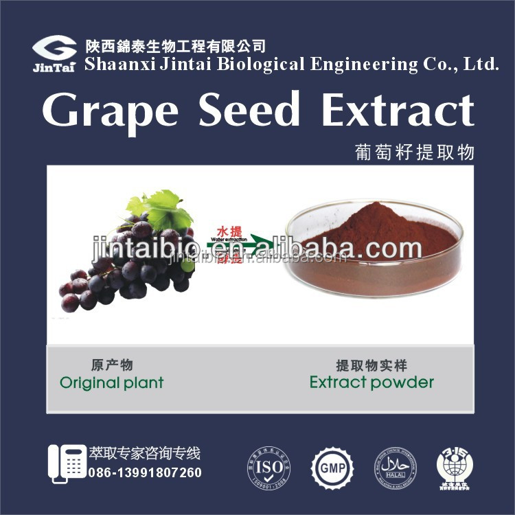 natural herb organic grape seed extract powder