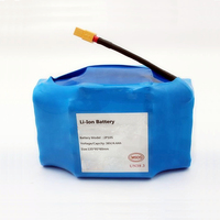 10S2P 4.4Ah 36V Lithium Battery Pack for Balance Vehicle