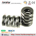 REACH compression spring supplier steel compression spring supplier
