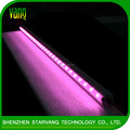 High brightness grow light for indoor plant /succulent plants/greenhouse