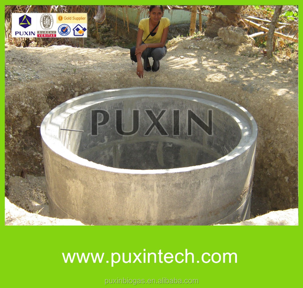 PUXIN biogas methane digester /Animal Waste New Biogas Plant to Generate Electricity, Mini Biogas Power Plant