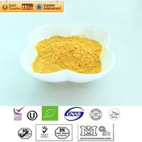 Spray dried Pumpkin powder 100%