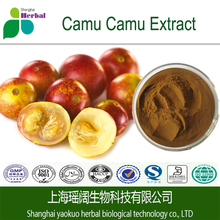 Organic Camu Camu fruit extract powder with best quality