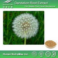 High Quality Dandelion Root Extract,Dandelion Root Extract Powder,Dandelion Root P.E. 5:1 10:1 20:1