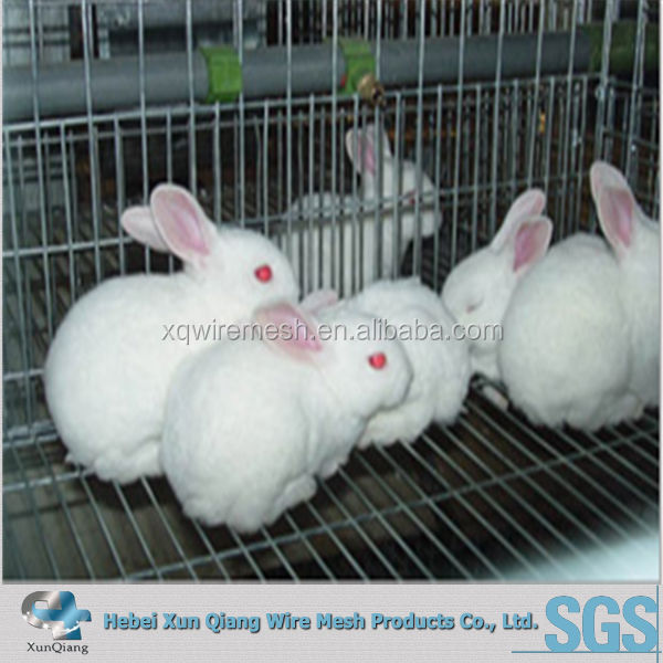 stainless steel indoor rabbit cage