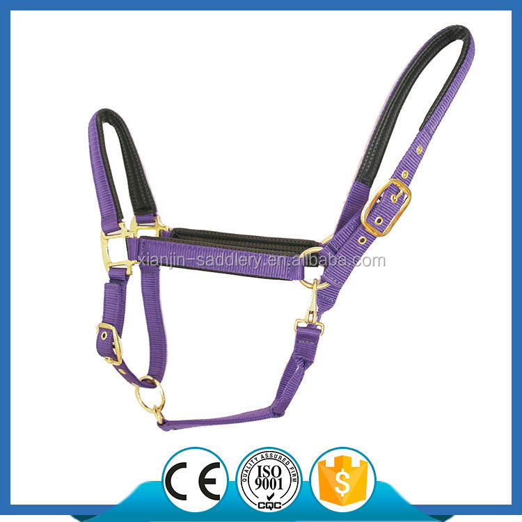 H1010 Adjustable Deluxe Horse Halter with PVC Foam Padding