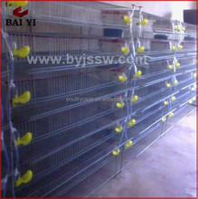 Alibaba Sale Automatic Large Scale Quail Breeding Wire Cage For Kenya