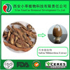 High Quality Pure Natural Radix Salvia Miltiorrhiza Extract Powder