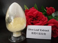 Nutraceuticals ingredients, olive leaf extract in bulk Hydroxytyrosol Oleuropein CAS 32619-42-4,Olive polyphenols