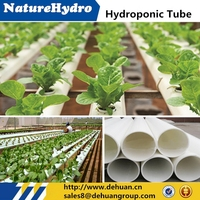 China Greenhouse Aeroponics System