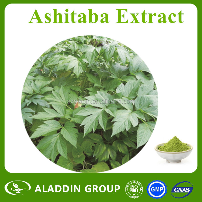 Factory Supply Pure Ashitaba/Angelica Keiskei Extract Powder