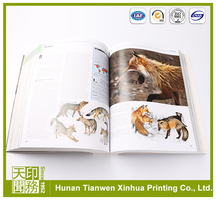Wholesale custom cheap print art photo book printing custom sewn binding photo books for kids