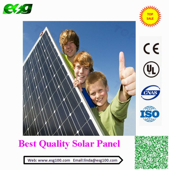 Cheaper Price MONO 300W Solar Panel/PV Module/Solar Module