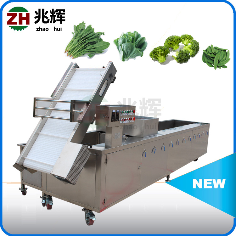 Industrial Food washing processing machine,asparagus Bubble Ozone cleaning machine(video)