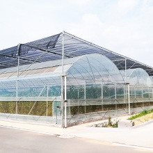 Commercial Uv Treated Plastic Film Greenhouse