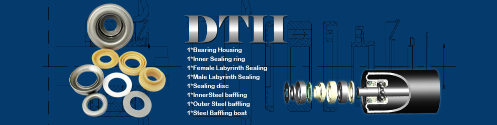 For DTII6204 Bearing Roller Seal Arrangement