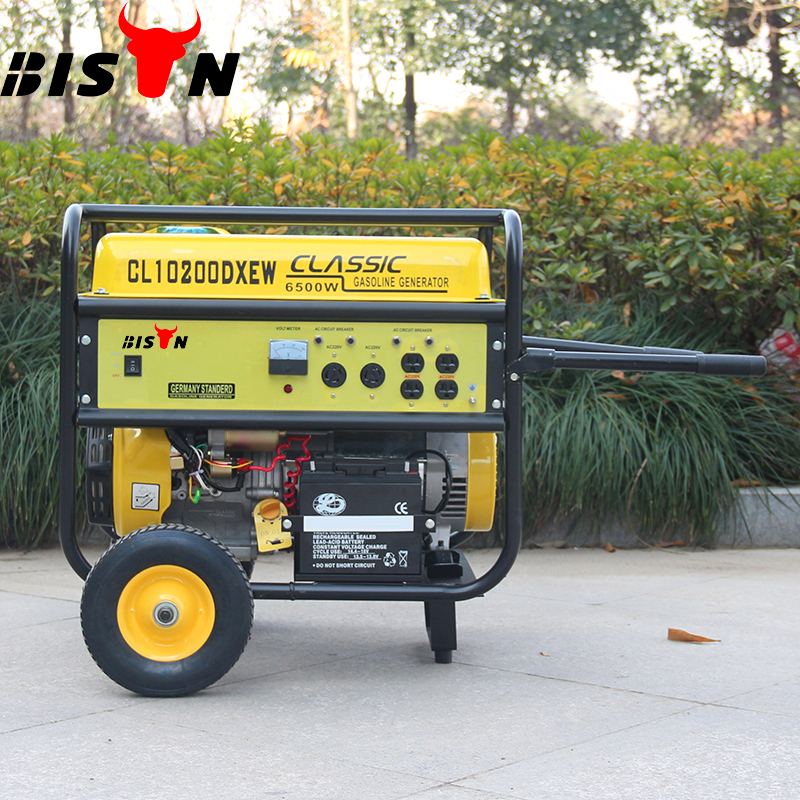 BISON(CHINA) Famous JD Portable Generator