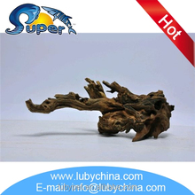 Low price driftwood mangrove with great price