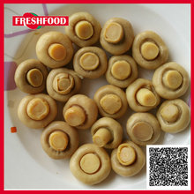 Vegetable price list buyers for oyster mushrooms market prices for mushroom