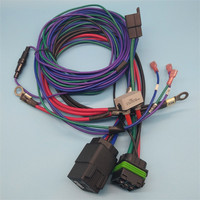 Custom made harness wiring Sold On Alibaba