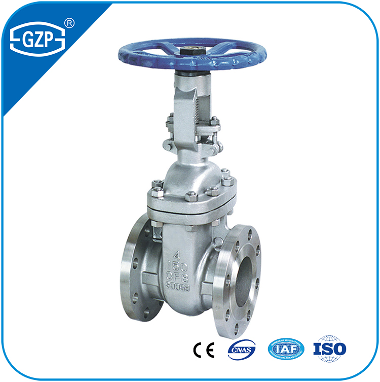 Casting Stainless Steel ASTM A351 CF3 CF8 CF3M CF8M API603 Wedge Gate Valve