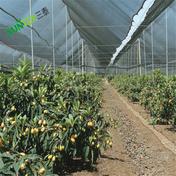 Agriculture HDPE plastic Mesh Apple Tree Anti HailNet,anti bee net