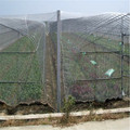 anti insect net for vegetable gardens
