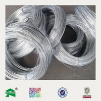 nails raw material electrical wiring/ zinc coated/ galvanized iron wire