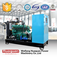 20kw Natural gas/biogas/gas generator with stamford alternator