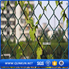 Wire mesh fence and house gate design supply in china