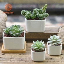 Wholesale High Quality Office Cheap Decoration Small Square Plant Pot