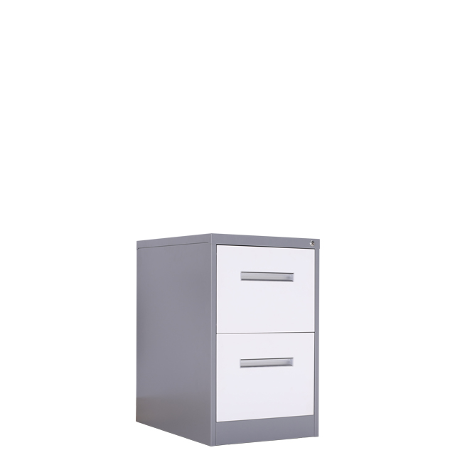 Steel Documents durable Storage Equipment Files Hanger Office Metal 2 Drawer Filing Cabinet