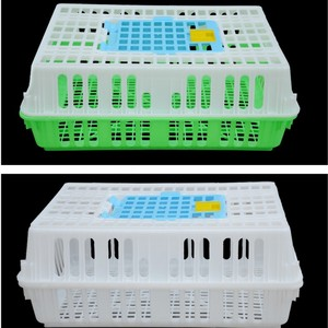 China Supply New Design Pigeon Transport Cage For Sale