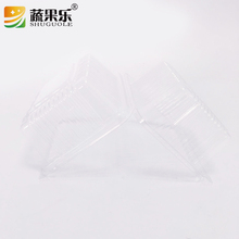 Disposable clear plastic PET cake box