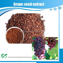High Quality Grape seed extract ( Proanthocyanidins/ Polyphenols)