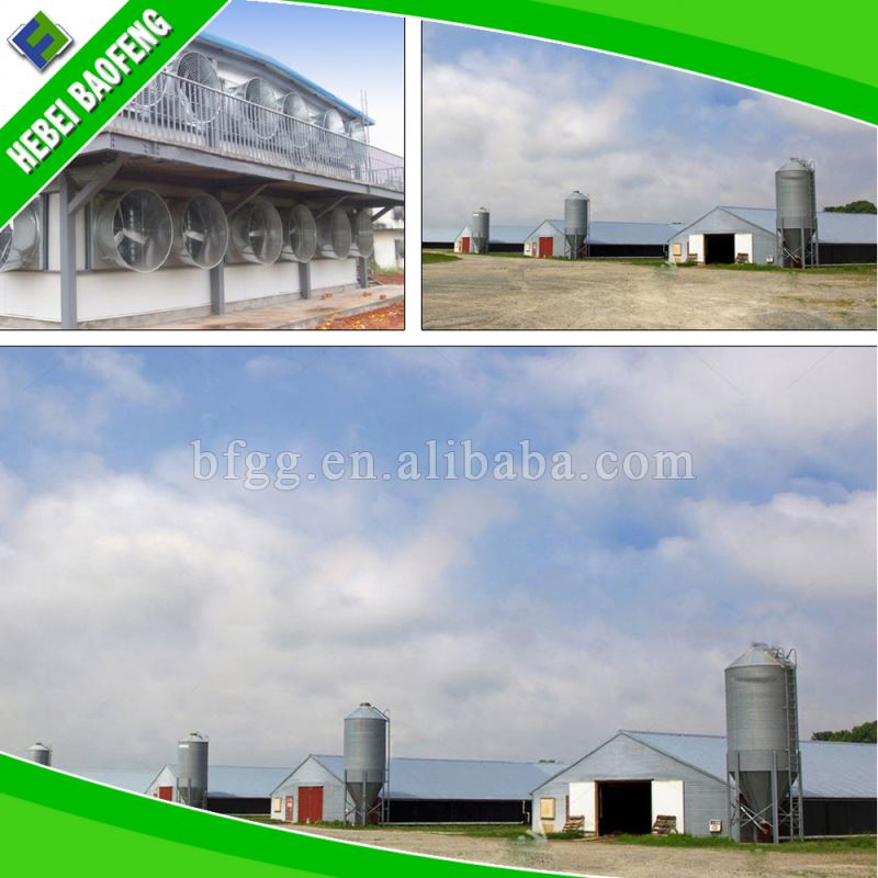 Light gauge steel frame buildings for india automatic poultry breeder sheds