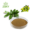 GMP Factory Supply Hot Sale Olive Leaf Extract 20 Oleuropein Powder