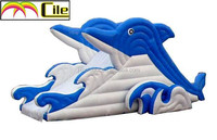 CILE 2015 Exciting Dolphin Shape Sea Waves Inflatable Water Slide