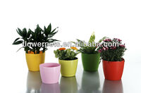KD3800N-KD3804N colorful plastic flower pot for indoor plants