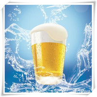 German Beer import to China agency service