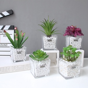 Best Sellers wholesale artificial flower fresh and natural Succulent plants glass vase for home decor wedding in 2019